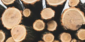 Holzriegelbau Fertigteilhaus